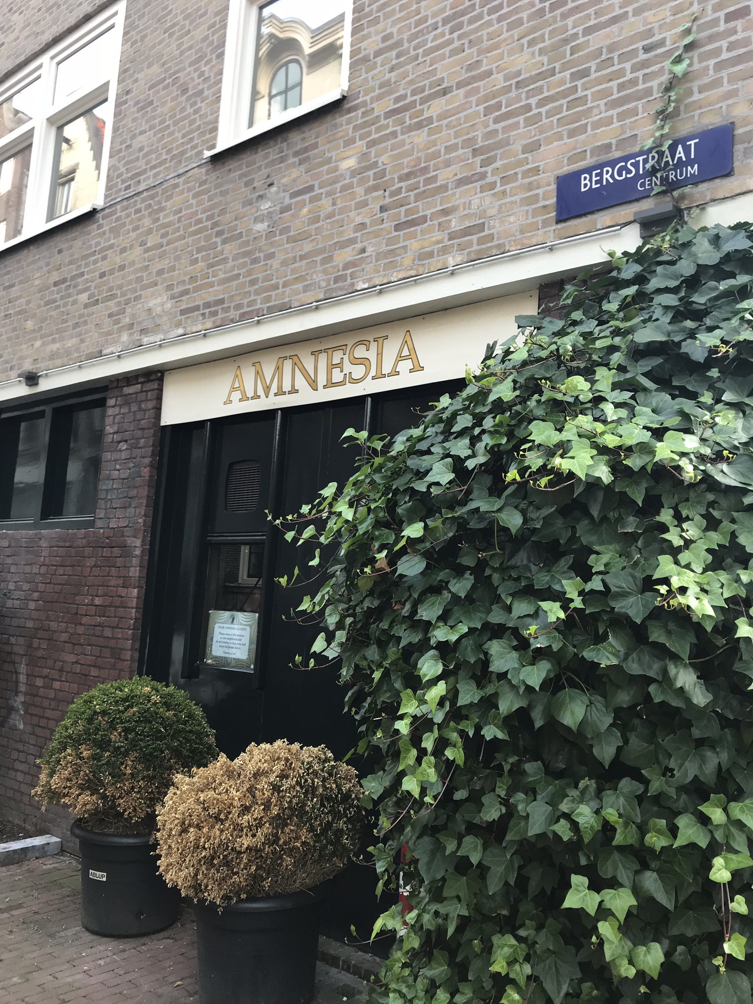 Relaxed Daytrip to Amsterdam