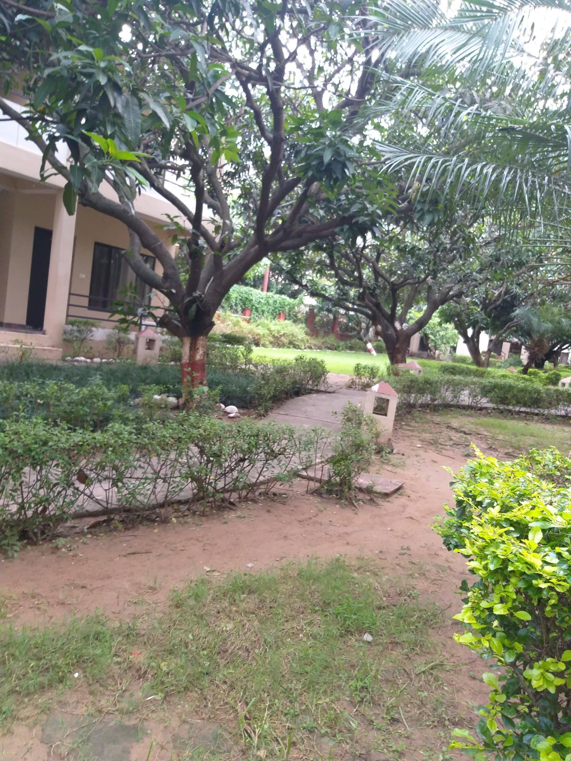 Resort in ramnagar