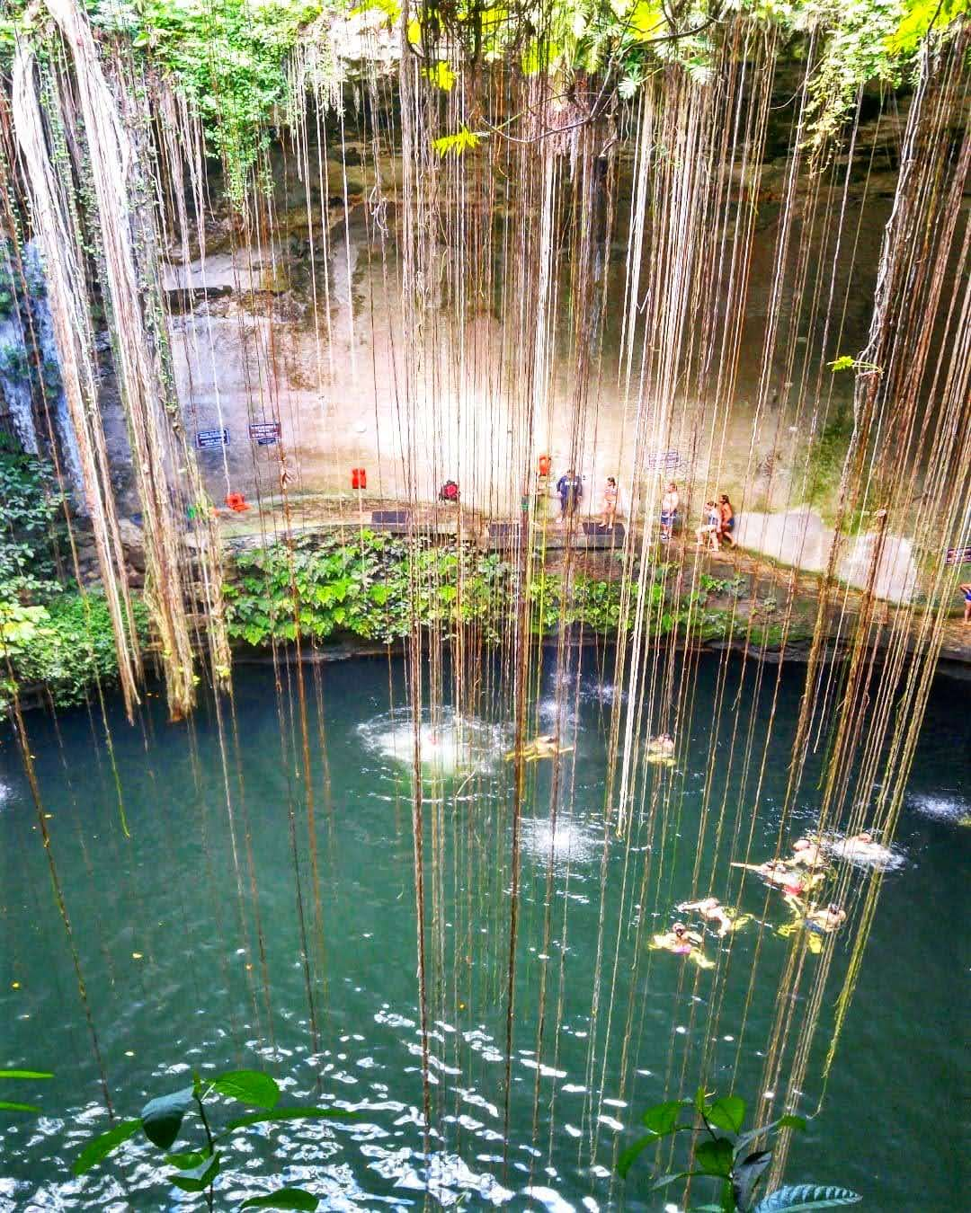 SO THIS IS A CENOTE?!? WHY YOU SHOULD VISIT VALLADOLID