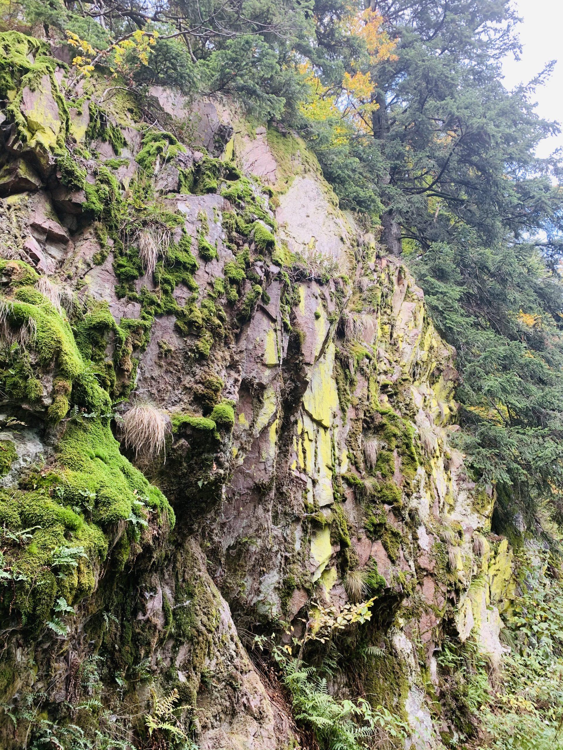 Sagenhafter Wasserfall und Klosterruine
