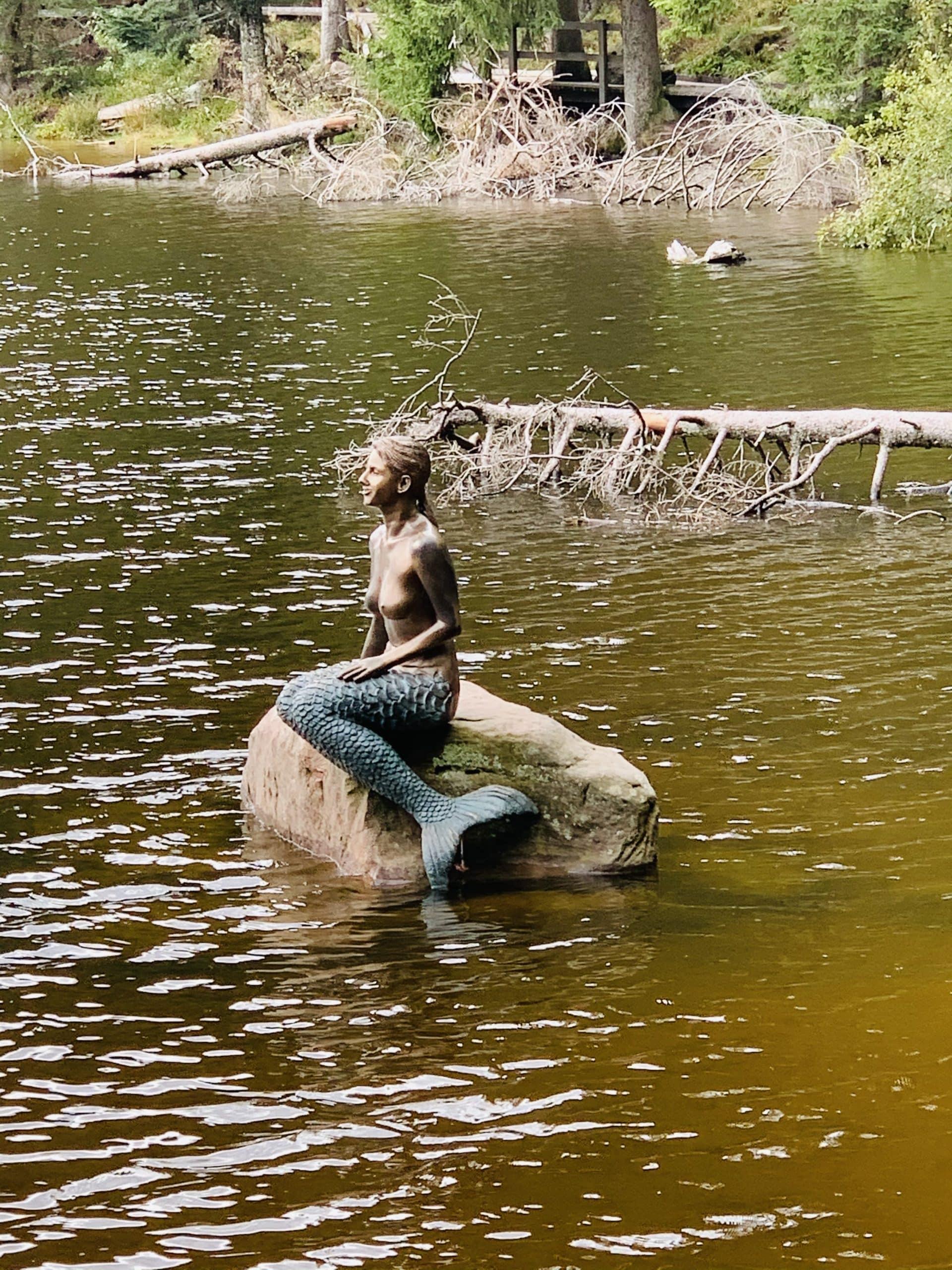 Märchenhafter Mummelsee