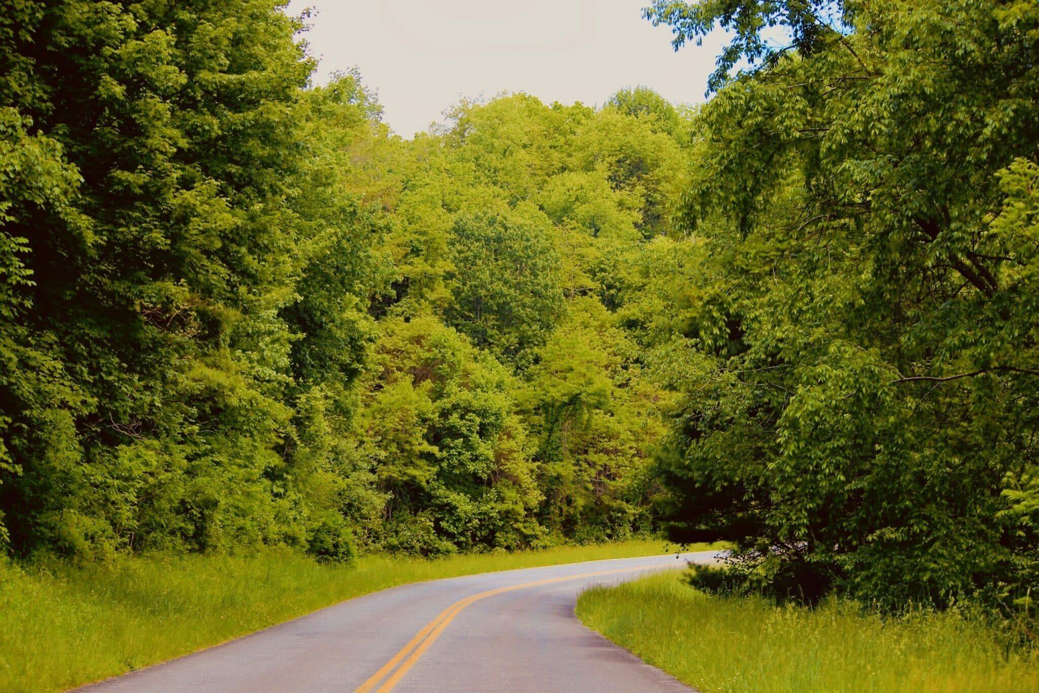 Natural Bridge Park and Blue Ridge Parkway.