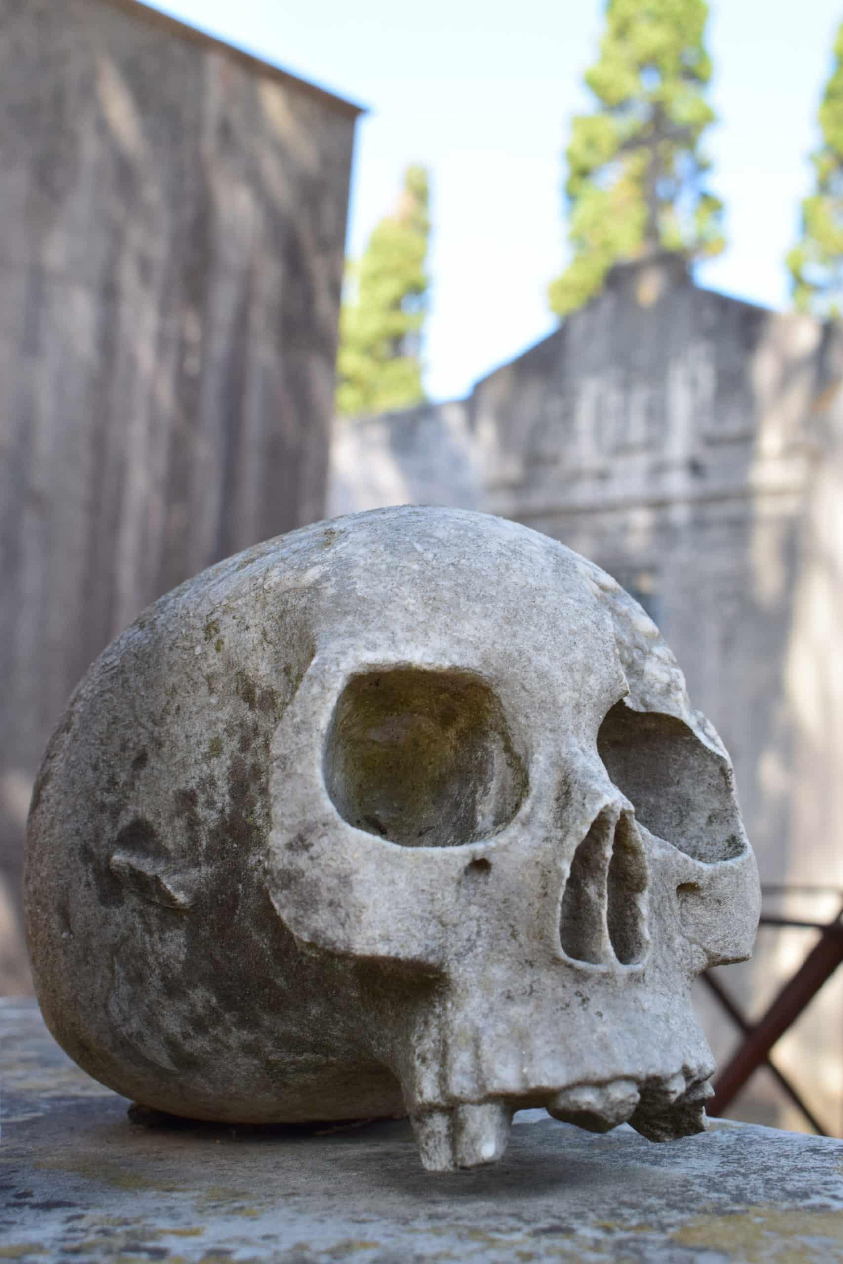Cemetery Prazeres 7