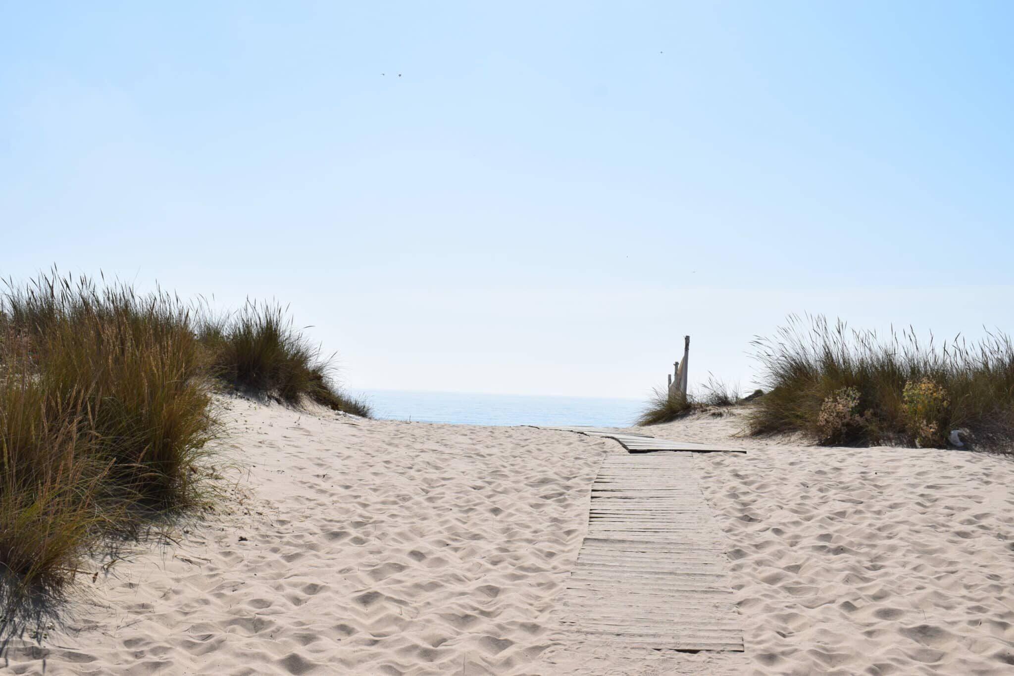 beach day lisbon 9