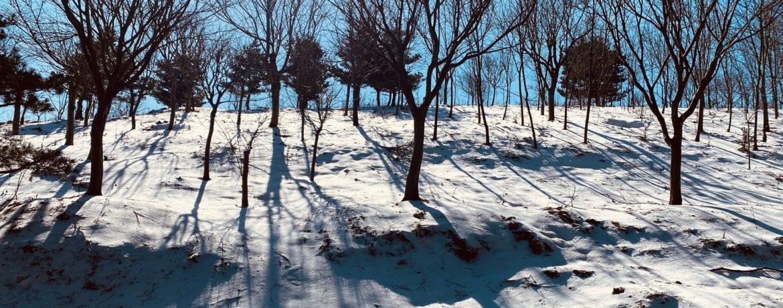 Simingshan in Winter 四明山