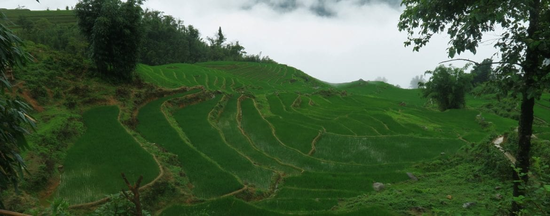 Sapa, getting lost into the greenest Vietnam