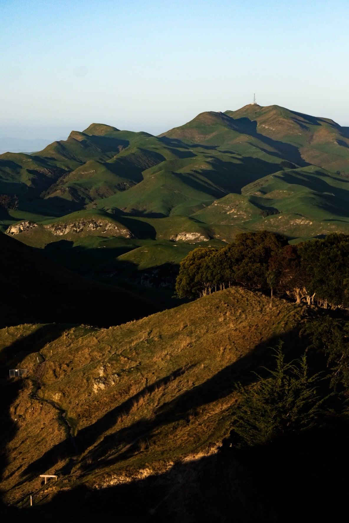 Te Mata Peak Hike