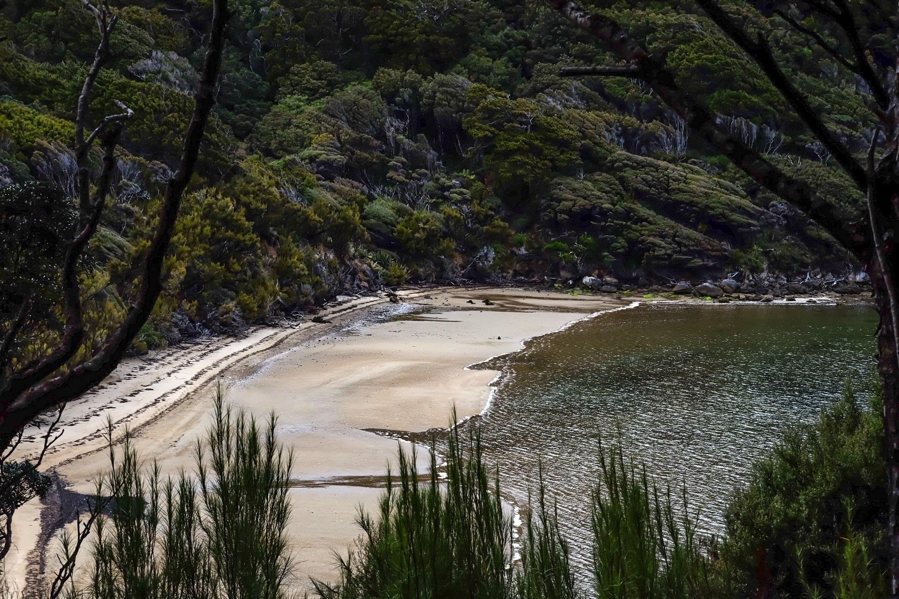 All you need to know – The Rakiura Great Walk