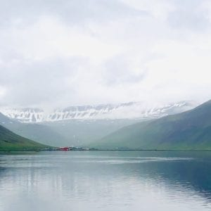 "Isafjördur ""Eisfjord, Stockfischprobe und Fischerhütten""-thumbnail"