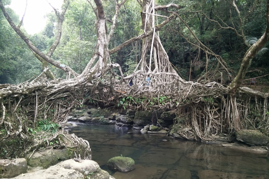 A Guide to Meghalaya – Abode of Clouds – Shillong