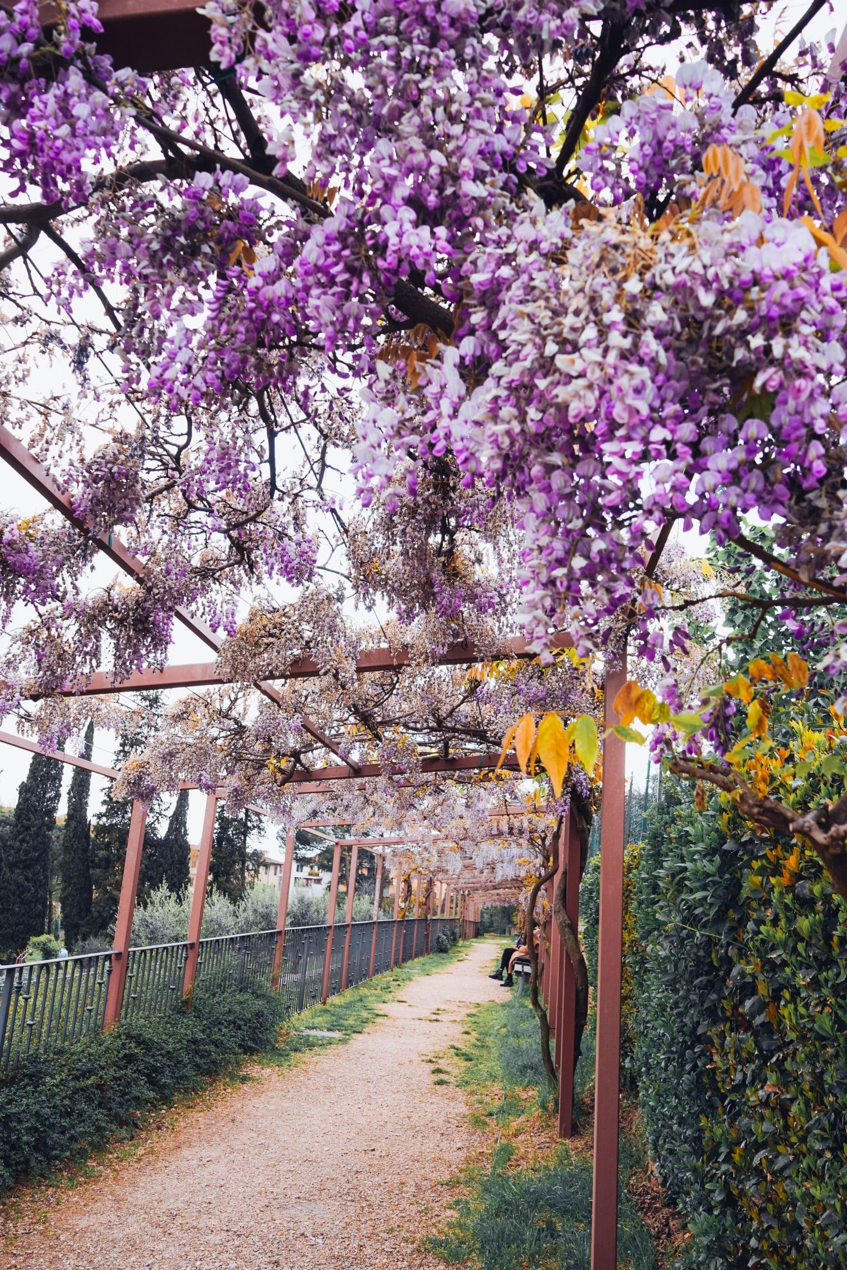 The Florentine parks