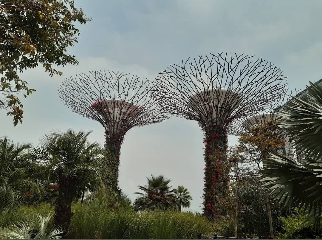 One Day in Singapore