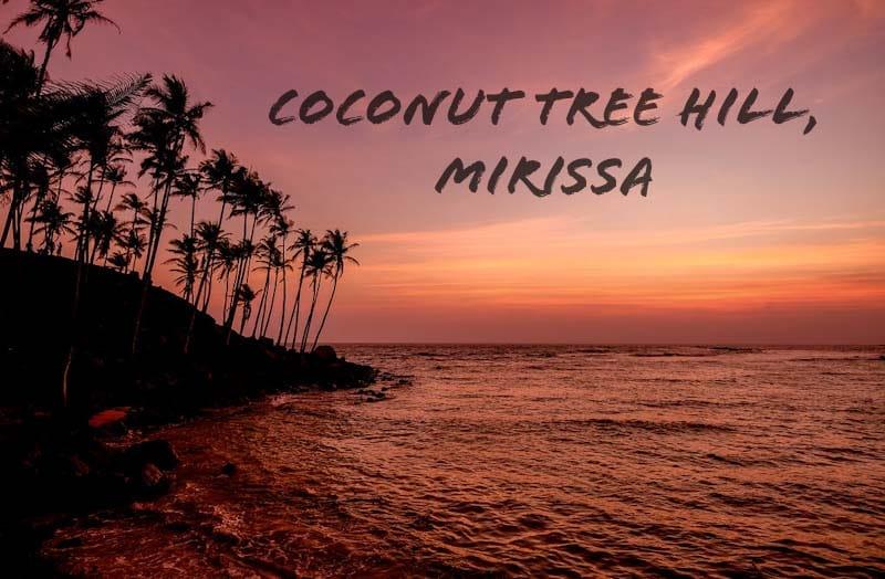 Coconut Tree Hill, Mirissa – Sri Lanka