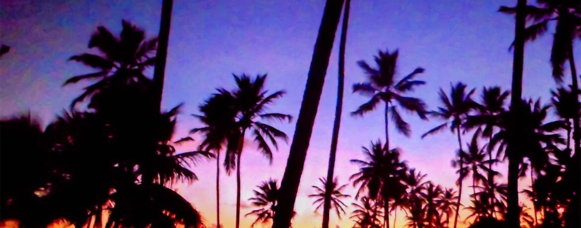 5 THINGS TO DO IN PUNTA CANA