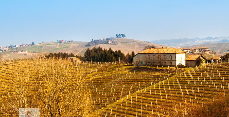 By bicycle in the Nebbiolo hills